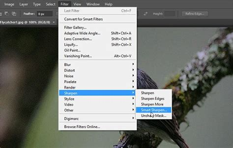 How to Sharpen Your Images Using Photoshop