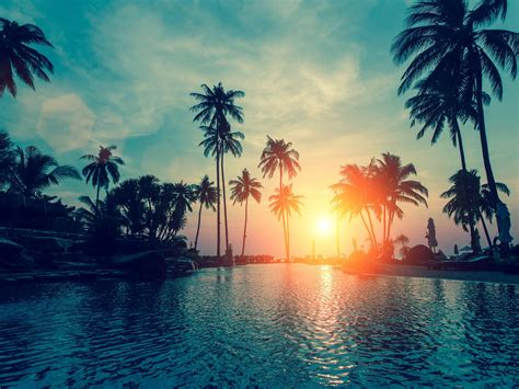 Wallpaper Sunset, Palm trees, Tropical beach, HD, Nature